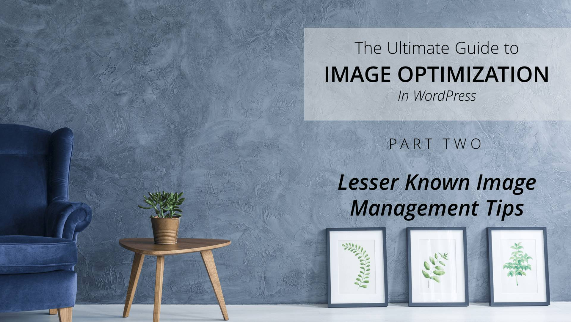 3 Lesser Known Image Management Tips in WordPress